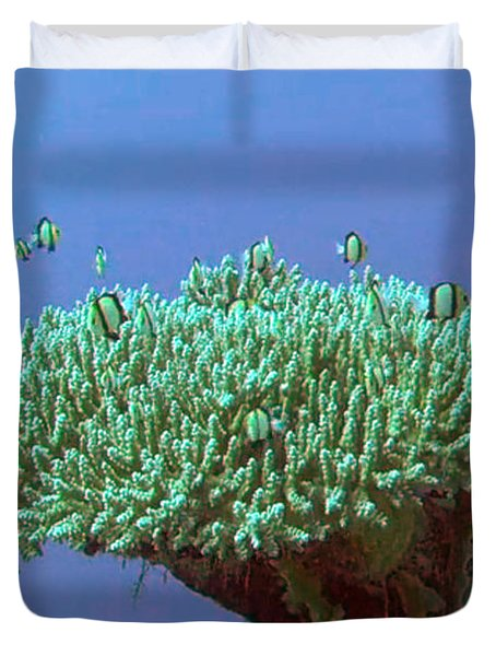 Zanzibar Island Sea  Coral Reef Vegitation Bio Diversity Of Exotic Fish Plants And  Organisims Zanzi Duvet Cover