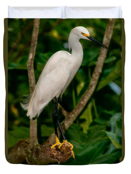 Duvet Cover featuring the photograph White Egret by Christopher Holmes