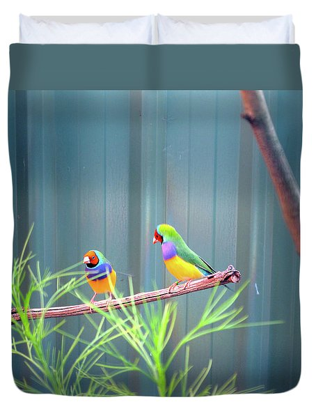 Aussie Rainbow Lovebirds Duvet Cover