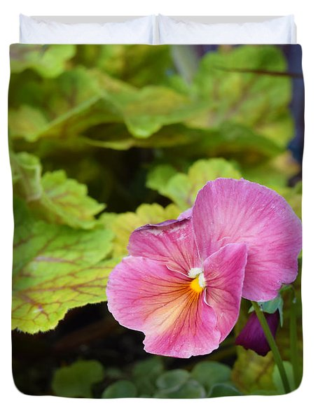 2015 After The Frost At The Garden Pansies 3 Duvet Cover