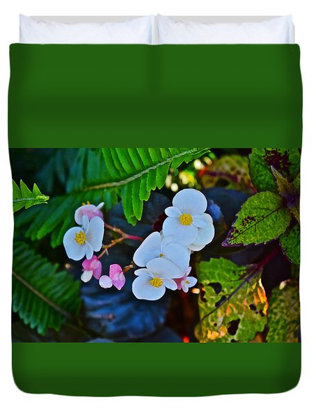 2015 Early September At The Garden Begonias Duvet Cover