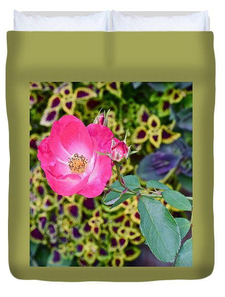 2015 Fall Equinox At The Garden Hello Fall Duvet Cover
