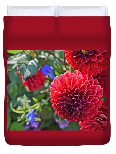 2015 Mid September At The Garden Dahlias 2 Duvet Cover
