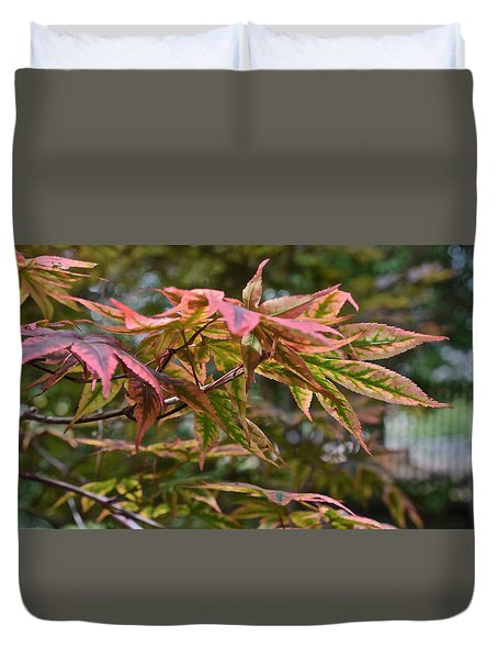 2015 Mid-september At The Garden Japanese Maple 1 Duvet Cover