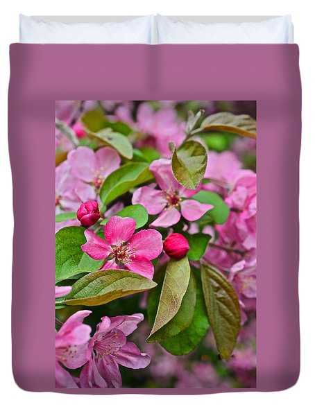 2015 Spring At The Gardens Pink Crabapple Blossoms 2 Duvet Cover