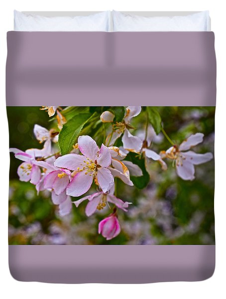 2015 Spring At The Gardens White Crabapple Blossoms 1 Duvet Cover