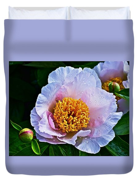 2015 Spring At The Garden White Peony  Duvet Cover