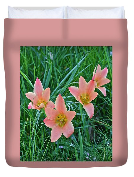 2015 Spring At The Gardens Meadow Garden Tulips 3 Duvet Cover