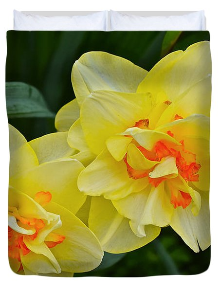 2015 Spring At The Gardens Tango Daffodil Duvet Cover