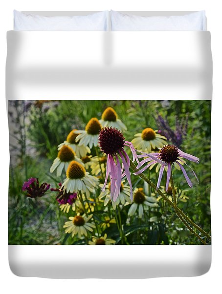 2015 Summer At The Garden Coneflowers Duvet Cover
