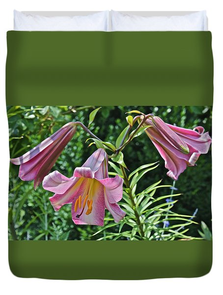 2015 Summer At The Garden Lilies In The Rose Garden 2 Duvet Cover