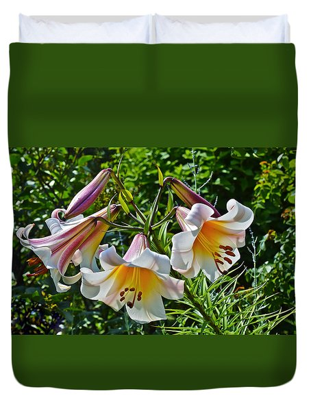 2015 Summer At The Garden Lilies In The Rose Garden 1 Duvet Cover
