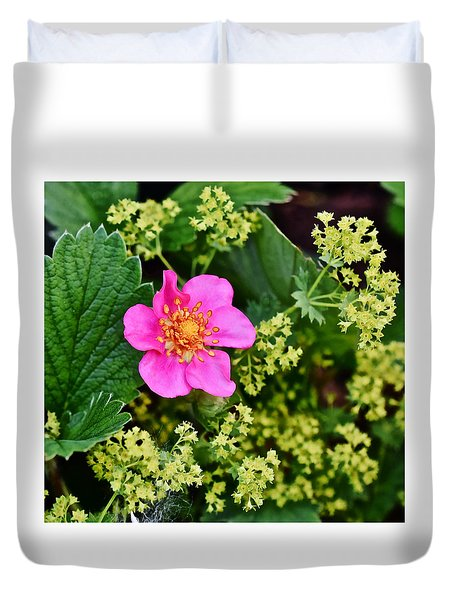 2015 Summer's Eve At The Garden Lipstick Strawberry Duvet Cover