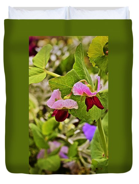 2015 Summer's Eve At The Garden Sweet Pea 2 Duvet Cover