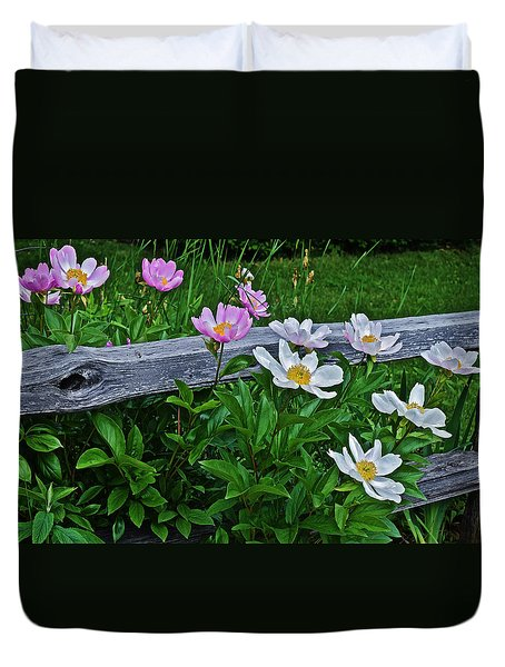 2015 Summer's Eve Neighborhood Garden Front Yard Peonies 2 Duvet Cover