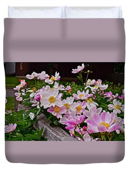 2015 Summer's Eve Neighborhood Garden Front Yard Peonies 4 Duvet Cover