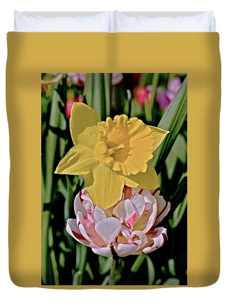 Duvet Cover featuring the photograph 2018 Acewood Tulips Daffodil With Tulips by Janis Nussbaum Senungetuk
