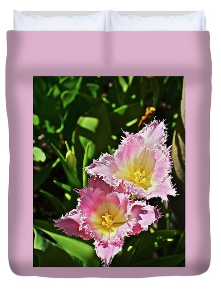 Duvet Cover featuring the photograph 2018 Acewood Tulips Fringed Beauties by Janis Nussbaum Senungetuk