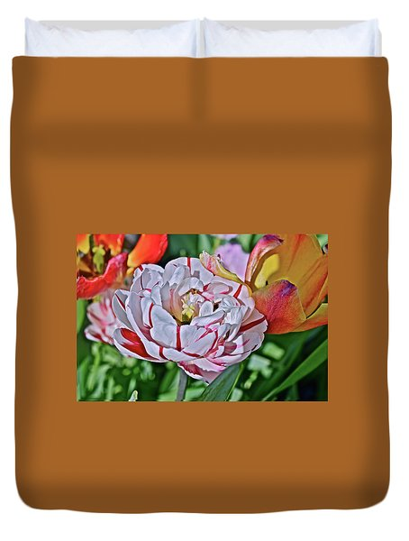 Duvet Cover featuring the photograph 2018 Acewood Tulips Red And White Orange And Yellow by Janis Nussbaum Senungetuk