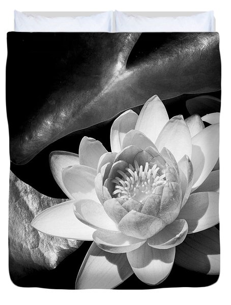 Black And White Flower  Duvet Cover by Kevin Blackburn