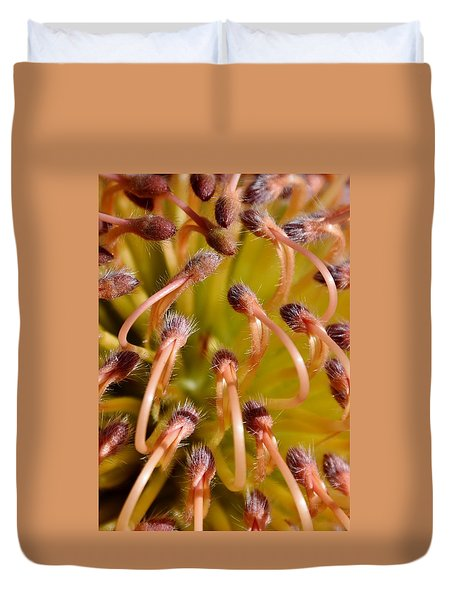 Common Pincushion Protea Duvet Cover