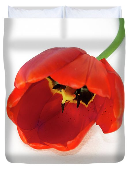 Red Tulip Duvet Cover by Elvira Ladocki