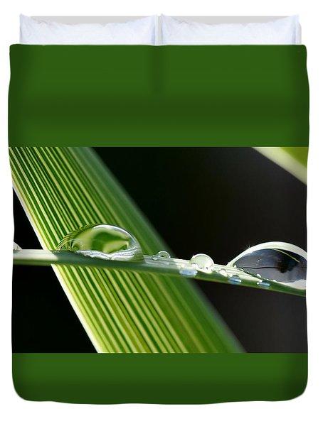 Big Rain Drops On Leaf Duvet Cover by Werner Lehmann
