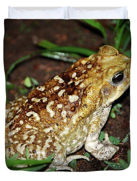 Cane Toad Duvet Cover