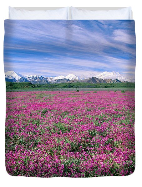 Denali National Park Duvet Cover by John Hyde - Printscapes