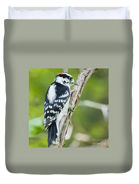 Downy Woodpecker  Duvet Cover