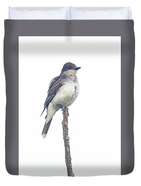 Eastern Kingbird Duvet Cover