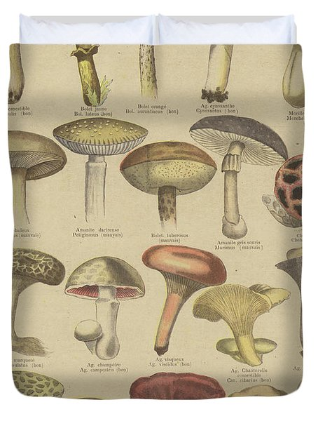 Edible And Poisonous Mushrooms Duvet Cover