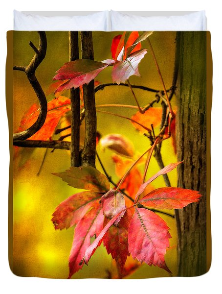 Duvet Cover featuring the photograph Fall Colors by Eduard Moldoveanu