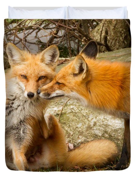 Foxes In Love Duvet Cover by Brian Caldwell