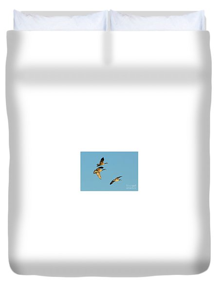 3 Geese In Flight Duvet Cover