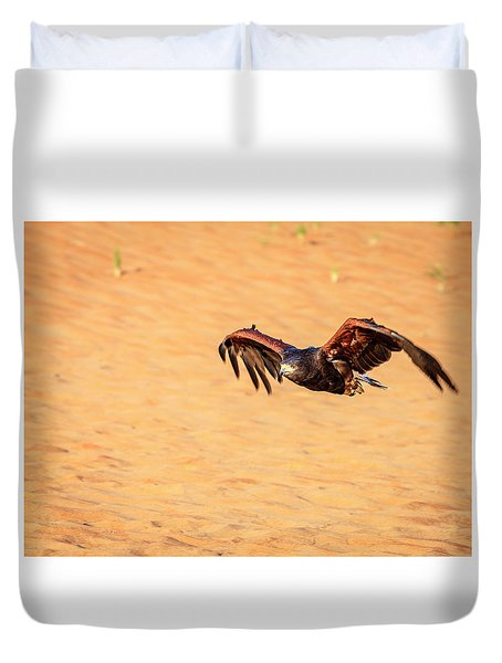 Duvet Cover featuring the photograph Harris Hawk by Alexey Stiop