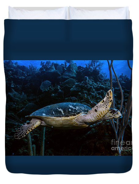 Hawksbill Turtle Duvet Cover by JT Lewis