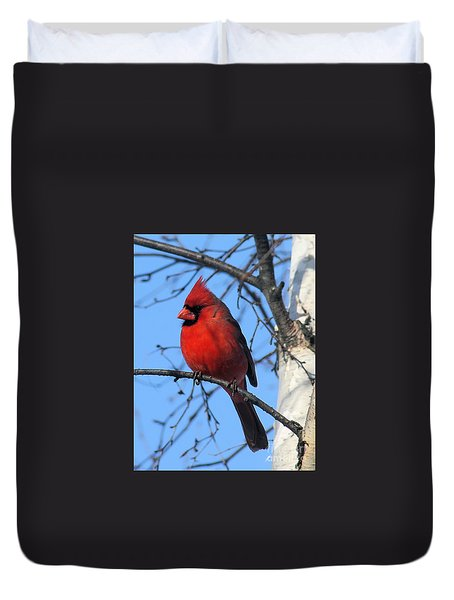 Northern Cardinal Duvet Cover