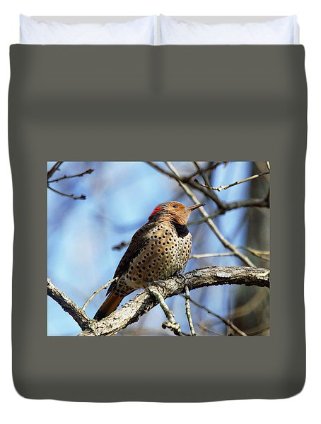 Northern Flicker Woodpecker Duvet Cover