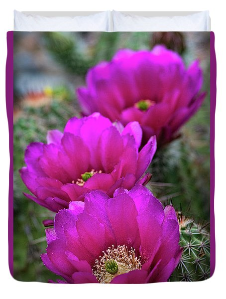 Duvet Cover featuring the photograph Pink Hedgehog Cactus  by Saija Lehtonen