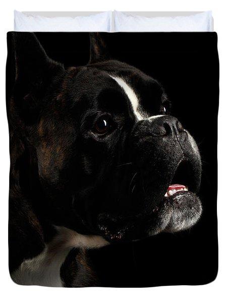 Purebred Boxer Dog Isolated On Black Background Duvet Cover