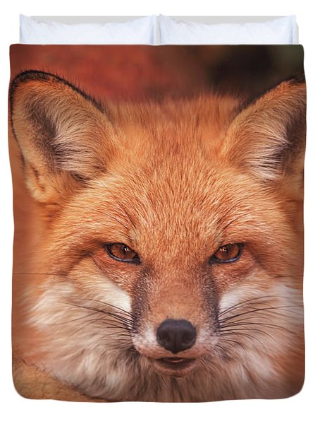 Red Fox  Duvet Cover by Brian Cross