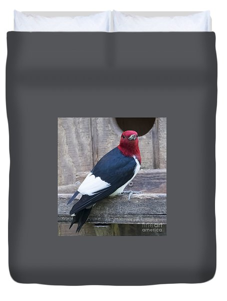 Duvet Cover featuring the photograph Red-headed Woodpecker by Ricky L Jones