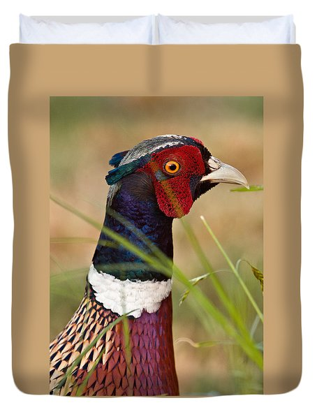 Ring-necked Pheasant Duvet Cover by Doug Herr