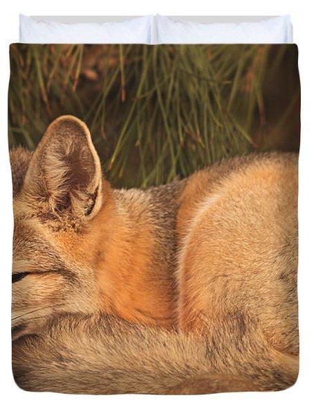 San Joaquin Kit Fox  Duvet Cover