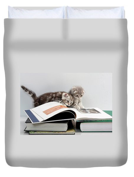 Duvet Cover featuring the photograph Scottish Fold Cats by Evgeniy Lankin