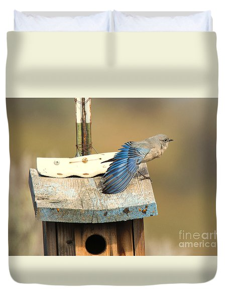Spread Your Wings Duvet Cover by Mike Dawson