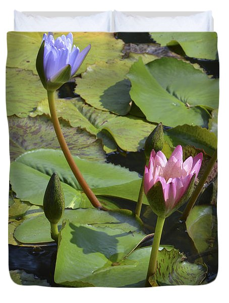 Water Lilies Duvet Cover by Linda Geiger