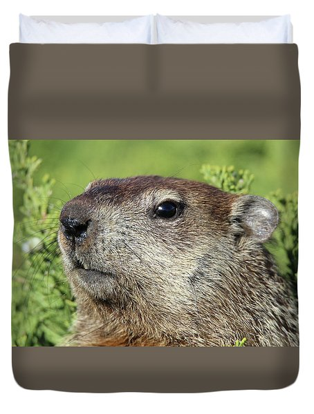 Woodchuck Calverton New York Duvet Cover