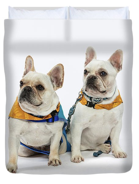 3010.062 Therapet Duvet Cover